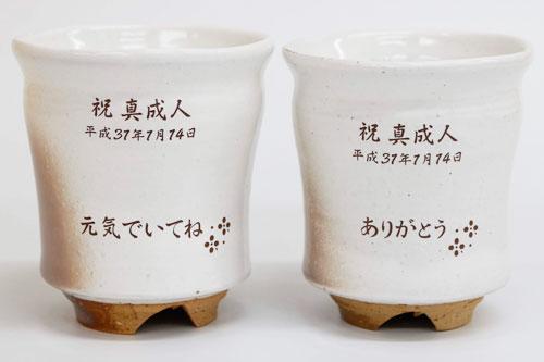 萩焼 窯変彩シリーズ 夫婦湯呑
